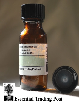 Basil Sweet Blend 1/2 oz (15 ML)